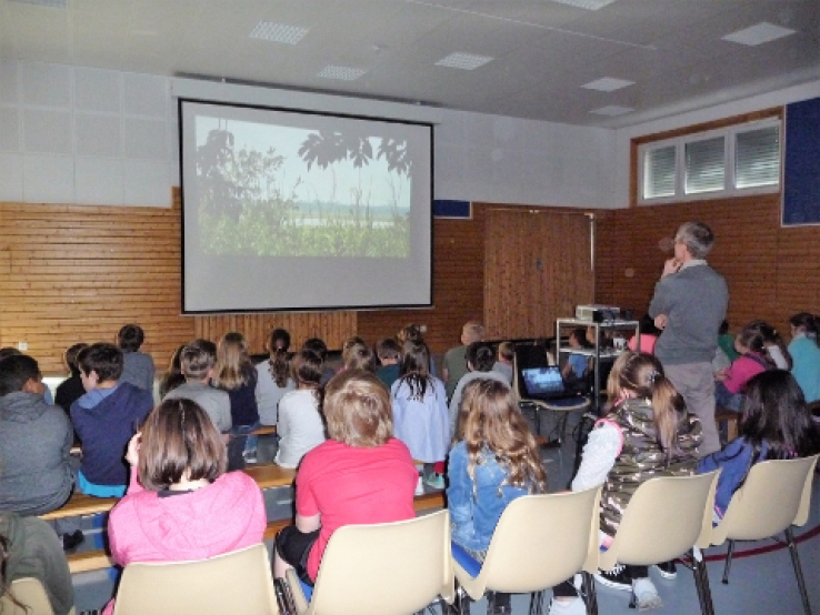Presentation of our work in primary school Gerbach