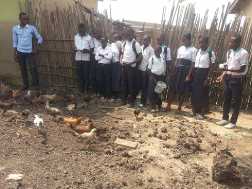 Agricultural project in Mabala contributes to school maintenance