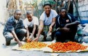 Theophile, Florence and other members of SABEC, very happy with their first harvest of tomatoes.