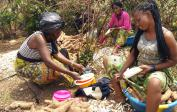 Jean's manioc: after the harvest, it is first peeled...