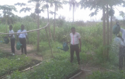 Students watering our acacia nursery - 1,000 seedlings