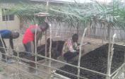 22. Agronom Philemon (right) started this palm nut nursery